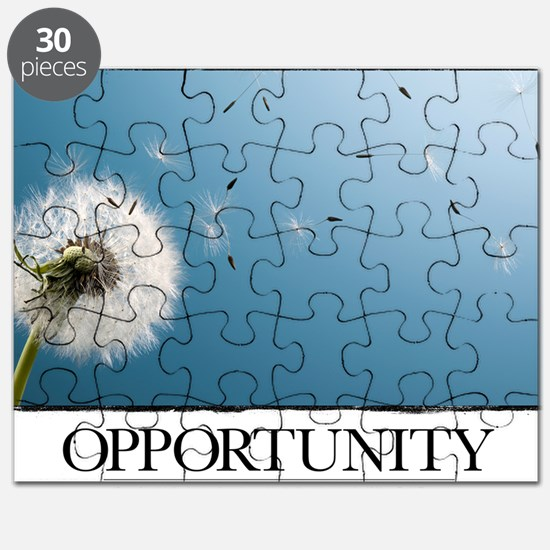 Inspirational Poster: Go confidently in the Puzzle