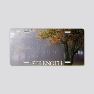Inspirational Poster: Every Aluminum License Plate