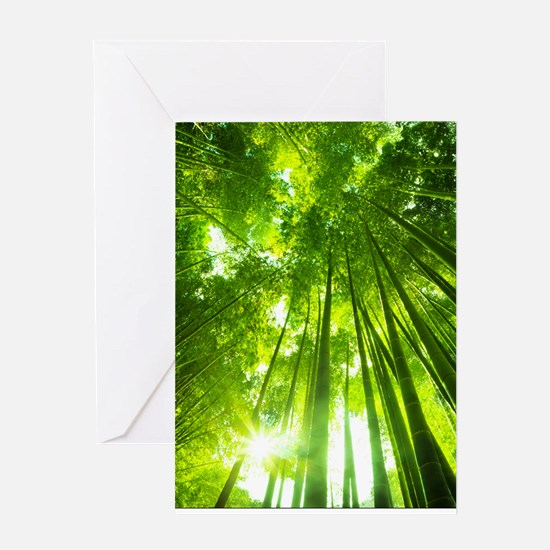 Inspirational Poster: Knowing yourse Greeting Card