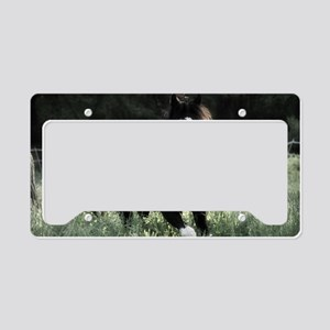 Toby License Plate Holder