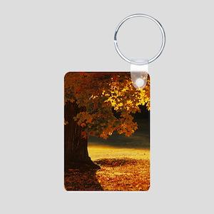 Inspirational Motivational Aluminum Photo Keychain