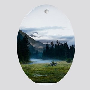Inspirational Motivational Poster: I Oval Ornament