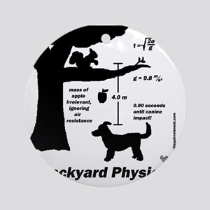 physics Round Ornament