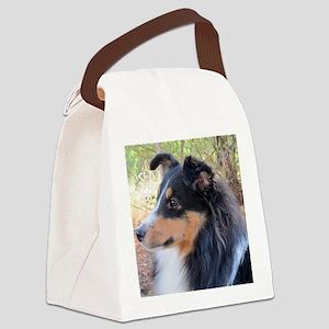 Tri-color Sheltie head study Canvas Lunch Bag
