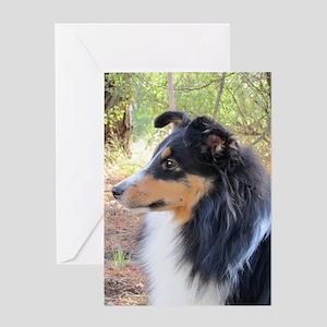 Tri-Color Sheltie Head Greeting Card