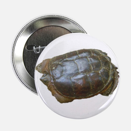 """snapping turtle 2 2.25"""" Button (10 pack)"""