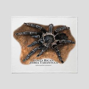 Costa Rican Zebra Tarantula Throw Blanket