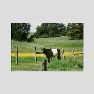 Oreo Cow 2 Rectangle Magnet