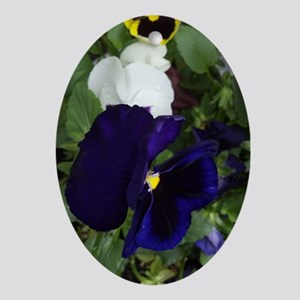 Pansies Oval Ornament