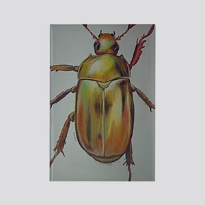 Gold Beetle Rectangle Magnet