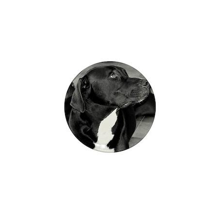 Portrait of Pittie mix - Bugsy Mini Button