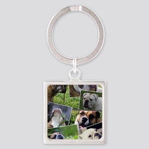 bulldog collage Square Keychain