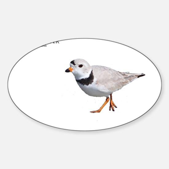 PIPING PLOVER T DESIGN Sticker (Oval)