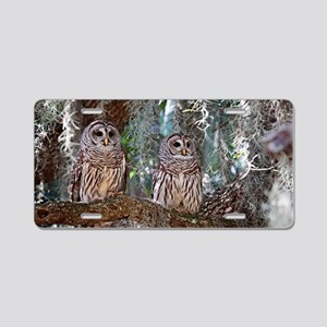 Barred Owls Aluminum License Plate