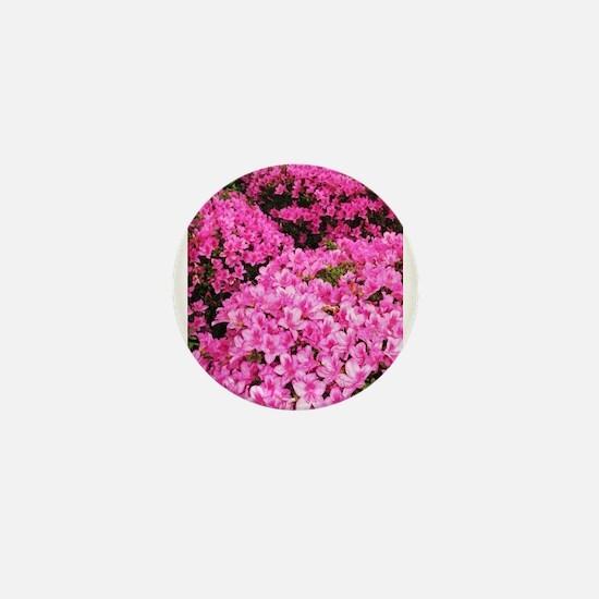 Azaleas blooming Mini Button