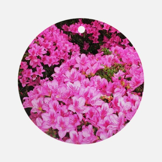 Azaleas blooming Round Ornament