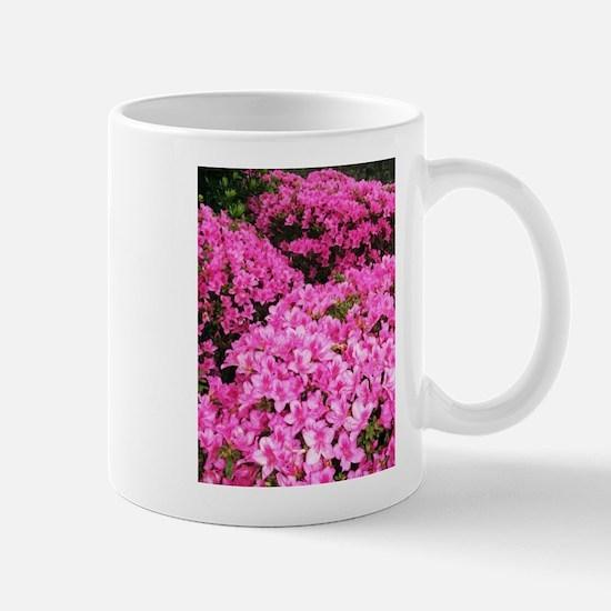 Azaleas blooming Mugs