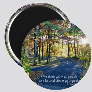 Direct your paths... Magnets