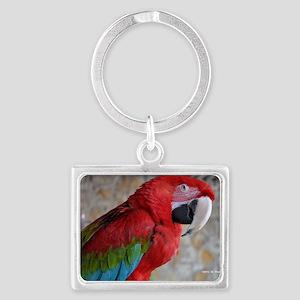 Green Wing Macaw Landscape Keychain