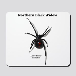 Northern Black Widow with text Mousepad