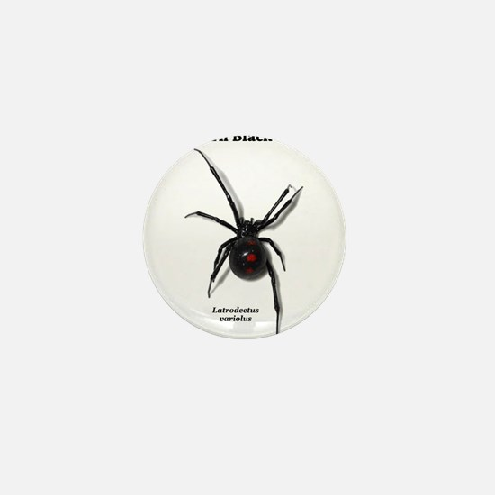 Northern Black Widow with text Mini Button