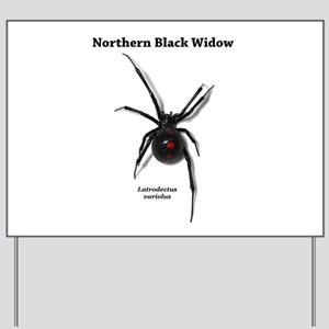 Northern Black Widow with text Yard Sign