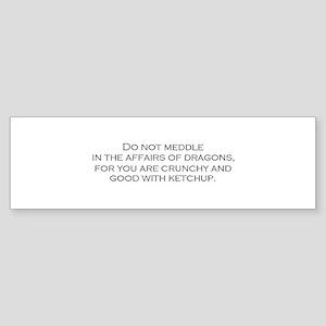 Leave the Dragons Alone Bumper Sticker