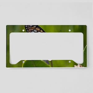 Regal Fritillary License Plate Holder