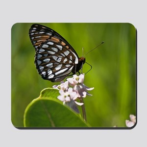 Regal Fritillary Mousepad
