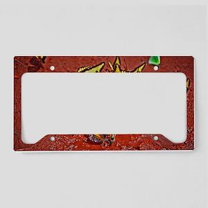 Butterflies License Plate Holder