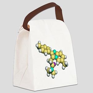 Zolpidem, sedative drug Canvas Lunch Bag