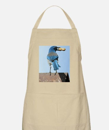 Cute Blue Jay with Peanut Apron