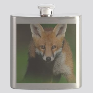 Young red fox Flask