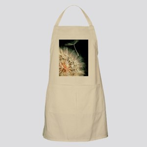 Yellow salsify seeds Apron