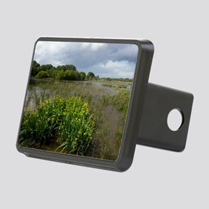 Yellow iris (Iris pseudaco Rectangular Hitch Cover