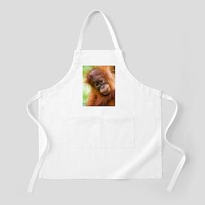 Young Sumatran orangutan Apron