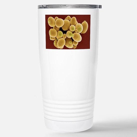 Yeast cells, SEM Stainless Steel Travel Mug