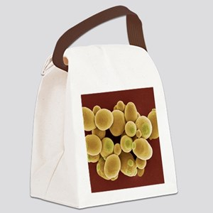 Yeast cells, SEM Canvas Lunch Bag