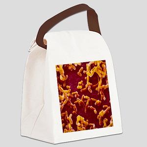 Yersinia pestis (plague) bacteria Canvas Lunch Bag