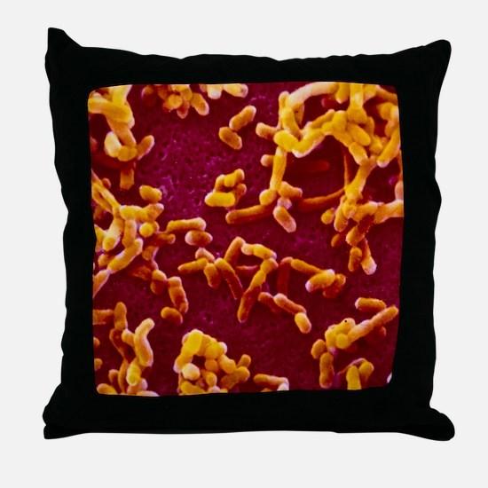 Yersinia pestis (plague) bacteria Throw Pillow