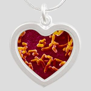 Yersinia pestis (plague) bac Silver Heart Necklace