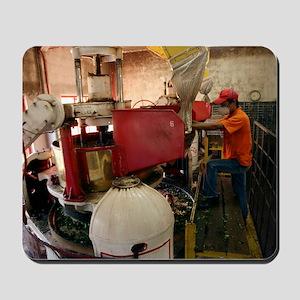 Worker at tea factory Mousepad