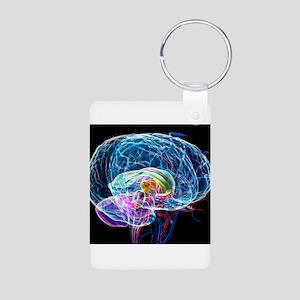 Brain anatomy, artwork - Keychains