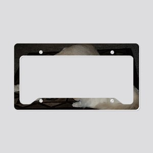 Dogs and cats License Plate Holder