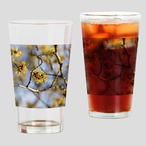 Witch Hazel (Hamamelis mollis) flow Drinking Glass