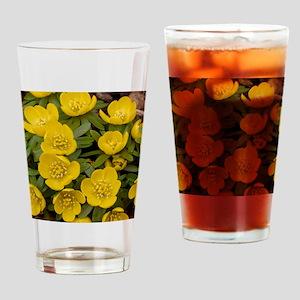 Winter Aconite (Eranthis hyemalis) Drinking Glass