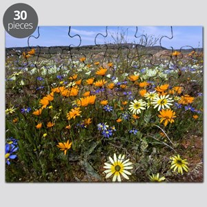 Wildflowers in South Africa Puzzle