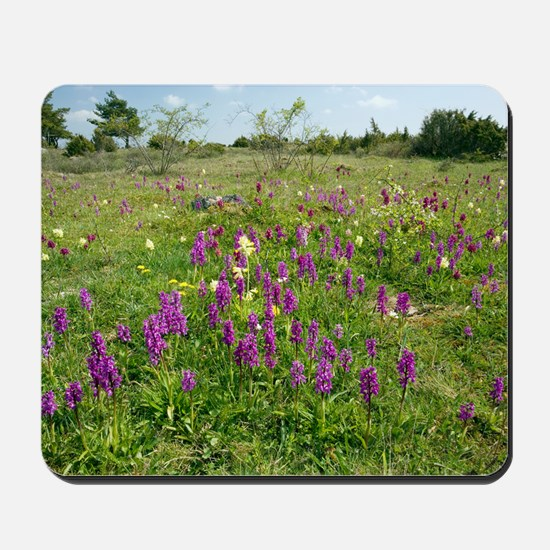 Wild orchids and cowslips Mousepad