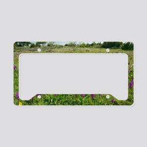 Wild orchids and cowslips License Plate Holder