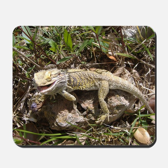 Spiny the Lizard Smiling Mousepad
